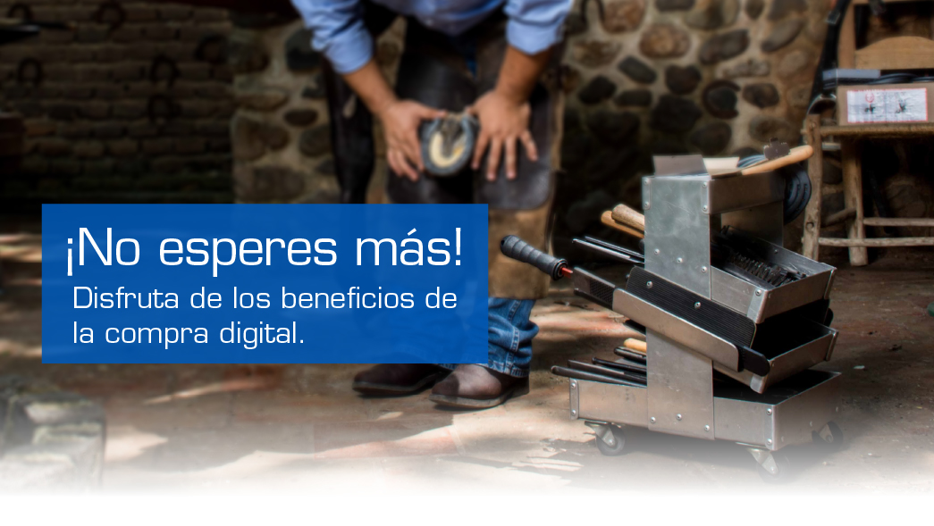 Banner E-commers MX Banner Principal Movil 1